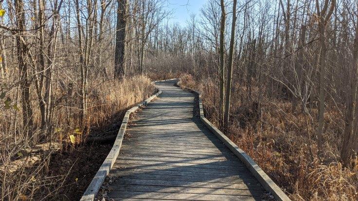 Dofasco 2000 Trail Boardwalk